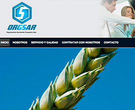 Organización Sarmiento