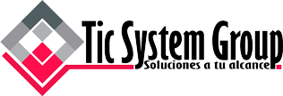 TIC SYSTEM GROUP